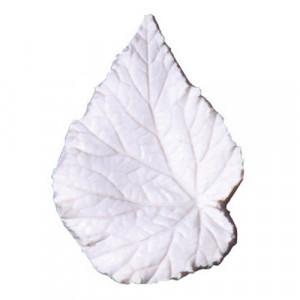 Squires Kitchen Leaf Veiner Begonia Rex, M