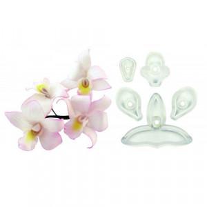 JEM Utstickare Singapore orkidée