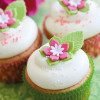 FunCakes Glutenfri Mix Cupcakes