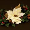 FMM Utstickare Poinsettia, Julstjärna